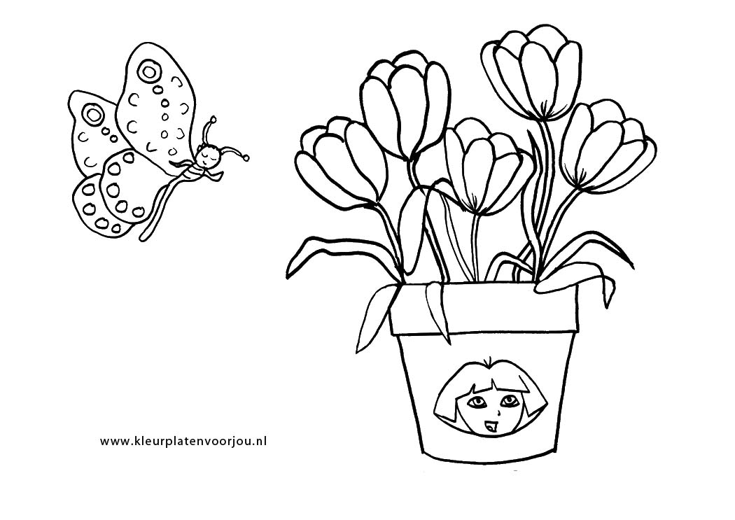 Kleurplaat Cactussen Dora Bloemen Met Vlinder Kleurplaten Voor Jou