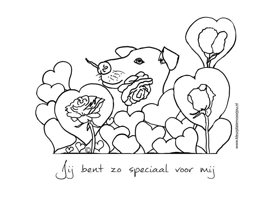 Leuke Kleurplaten Verjaardag Jij Bent Zo Speciaal Voor Mij Kleurplaat Liefde