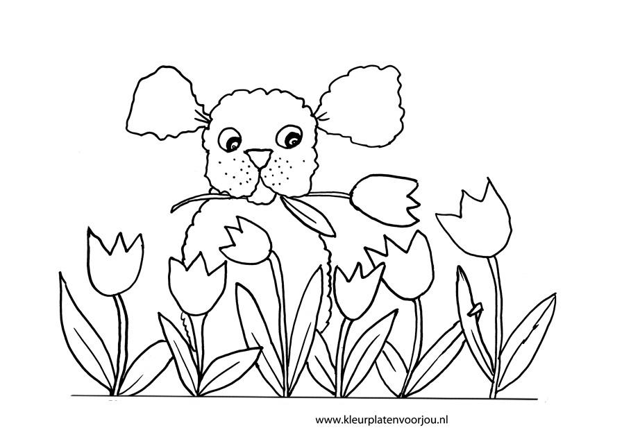 moederdag kleurplaat hondje met tulpen kleurplaat
