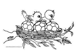 Kleurplaten Vogels En Voetbal In Nest