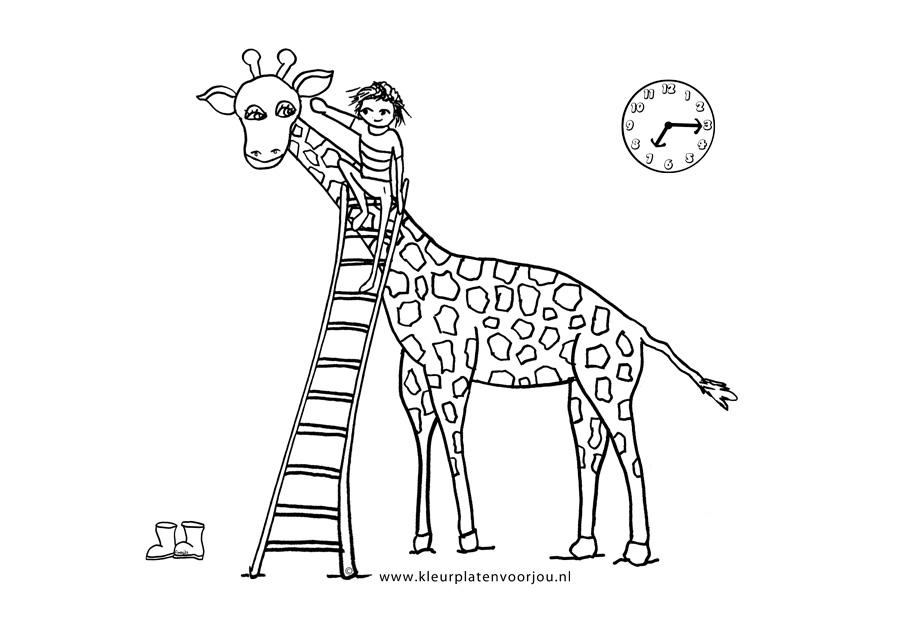 kleurplaat dikkertje dap dikkertje dap met giraffe
